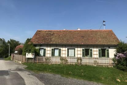 Charmantes kleines Landhaus in idyllischer Lage - Nähe Jennersdorf