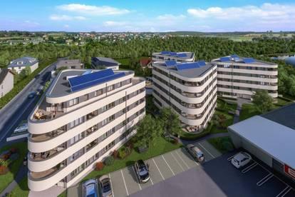 Neue, sonnige Wohnung ab Juni 2021 zu vermieten