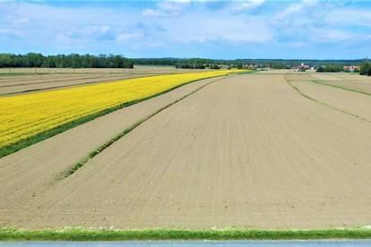 5100m² Bauland plus 1,62ha Ackerfläche - alles eben und arrondiert ! Ein Traum ev. auch für Pferdeliebhaber!