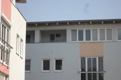 Wunderschöne, ruhige 2-Zimmerwohnung am Pleschingersee