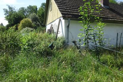 Altes Bauernhäuschen aus Lehm mit neuem Stall in zertifiziertem Naturgarten