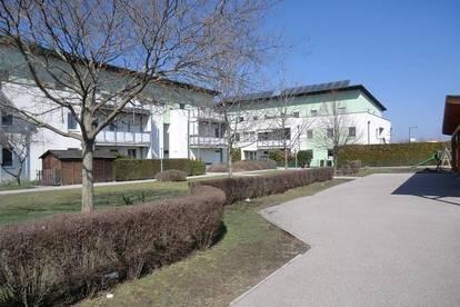 3-Zimmer Gartenwohnung nähe Bahnhof (provisionsfrei, unbefristet)
