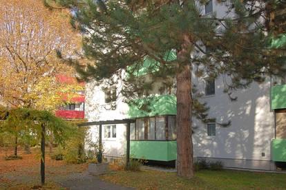 Gösting - Ansehnliche 3-Zi-Wohnung in ruhiger Grünlage
