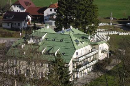 Haus im Haus- komplettes Dachgeschoß / Maisonett im Herzen des Steyrtals/ Kalkalpenregion