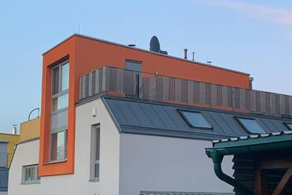 Doppelhaushälfte - Mitten im Grünen und nahe bei Wien