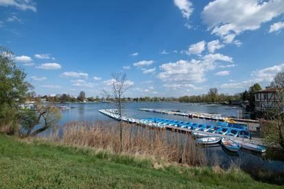 Wohnung in ruhiger Lage nahe Alter Donau zu verkaufen / Apartment near Alte Donau for sale