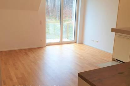 Provisionsfrei, inklusive DAN-Küche, 2 Garagenplätze extra, 9 km Wien-Auhof, sehr gute öffentliche Anbindung, Sonnig, Grünruhelage, perfekter Grundriss