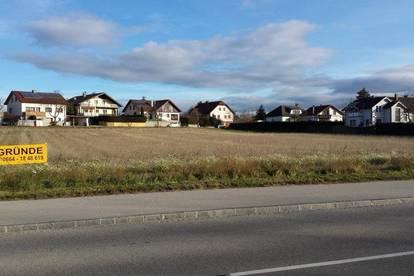 Gföhl Ortsgebiet - sonnige Baugrundstücke - Provisionsfrei