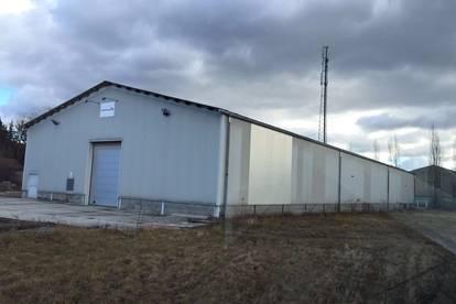 Halle mit Bürogebäude inkl. großem Grundstück zu vermieten
