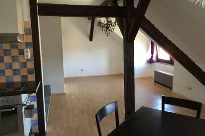 Loftartige, leistbare 73qm Wohnung in Uni Nähe
