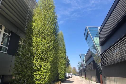 Außergewöhnliche exklusive Bürofläche in repräsentativem Business Center - PROVISIONSFREI!