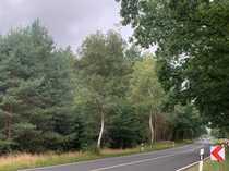 Gelegenheit aus Insolvenz Wald- und