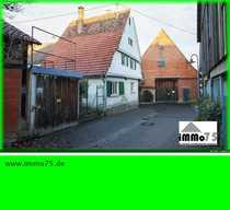 sanierungsbedürftiges Ensemble Bauernhaus Scheune Stall