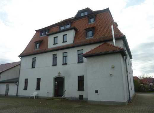 Große 2 Raumwohnung in Elstertrebnitz
