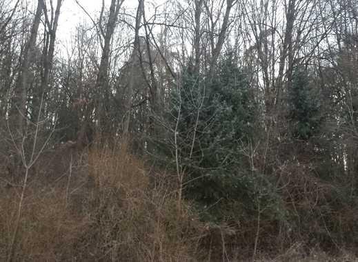 Schönes Waldgrundstück in herrlicher Lage - RESERVIERT