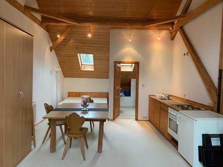 Schönes 1 Zi-Appartement komplett möbliert, EBK in Dingolfing