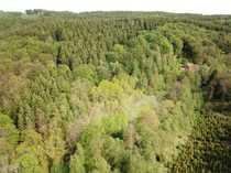 Forstfläche mit Grünland im MK -