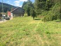 Sonniges Baugrundstück in Steinalben