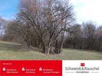 Grün- Waldland Freizeitgrundstück bei Schotten-Eschenrod