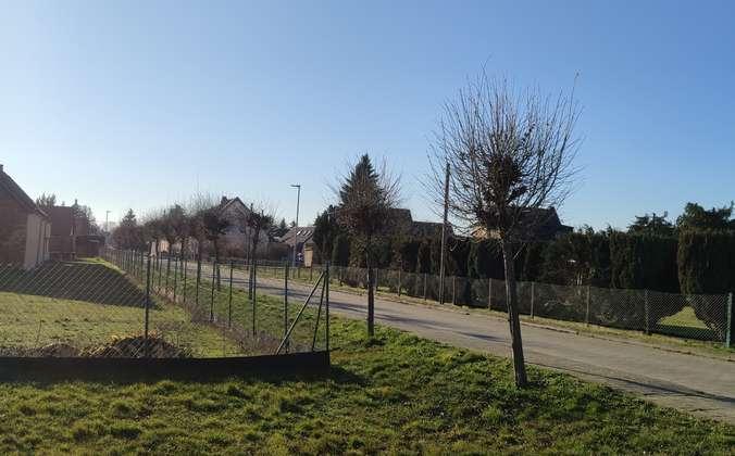 Grundsstücksgrenze - Straße