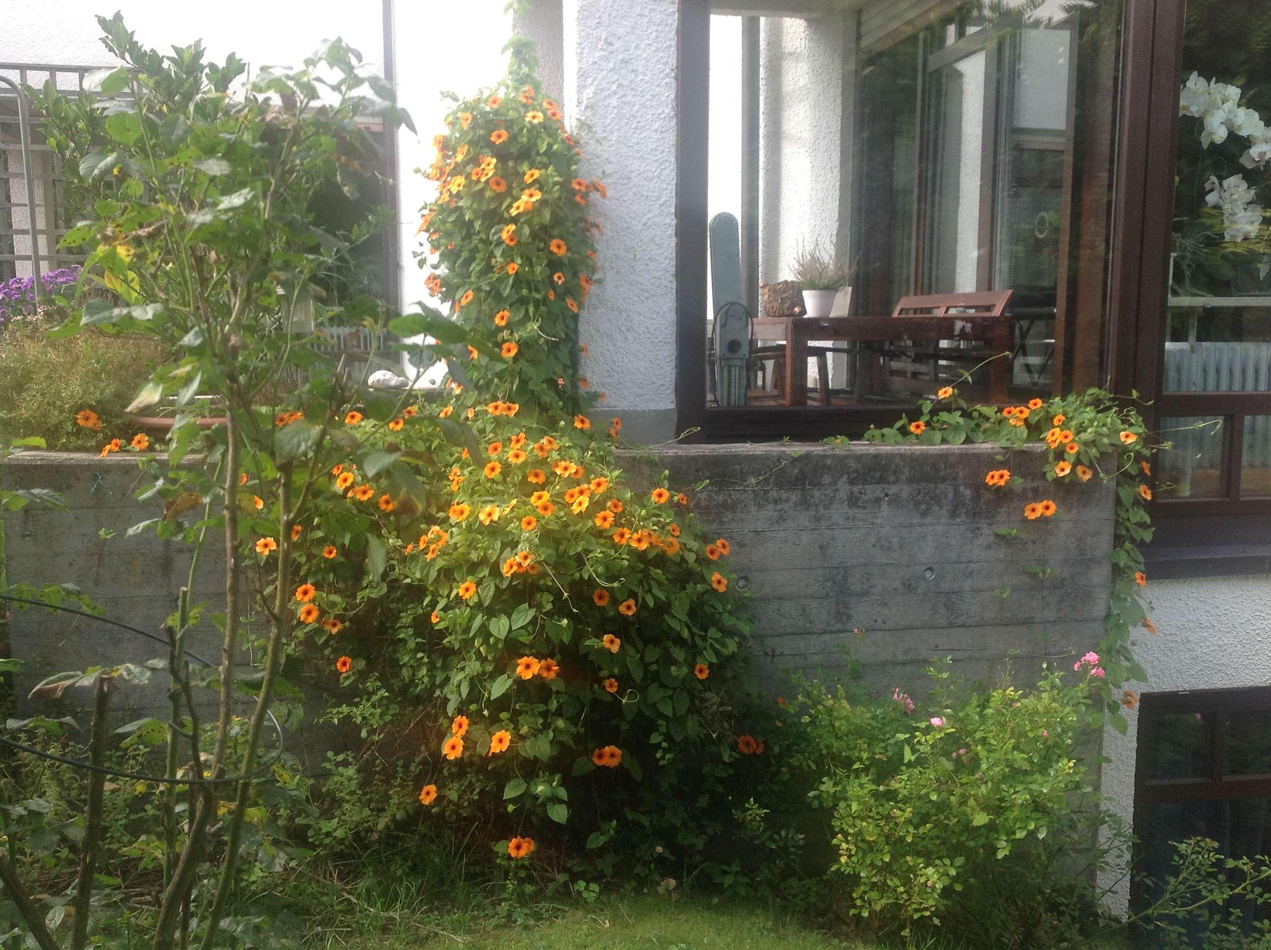 Helle 3 Zimmer Wohnung in Harlaching mit Südwest Terrasse und kleinem Garten in Harlaching (München)