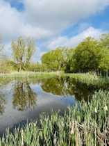 Traumgrundstück an einem kleinen See
