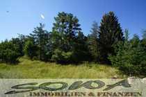 Waldgrundstück in Riedenburg - Ein Objekt