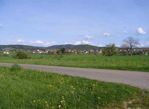 Attraktives Baugrundstück mit insgesamt 1,8 Hektar, teilbar in 2-4 Einheiten mit herrl.Feldbergblick