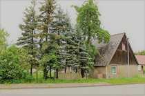 Maklerhaus Stegemann Einfamilienhaus mit Potenzial