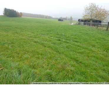 Hier warten 1.938 m2 sowie weitere Flächen in der direkten Umgebung (siehe weitere Liegenschaf in Bad Grund (Harz)