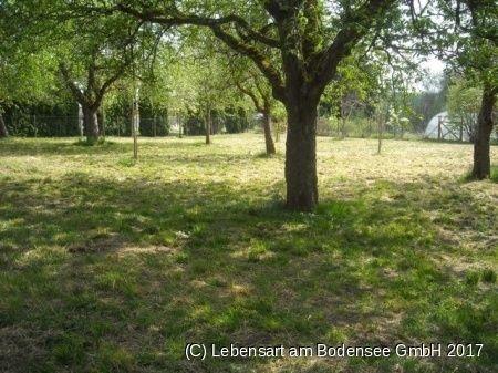 Lebensart Am Bodensee bauträger gesucht für sonnigen bauplatz in salem beuren