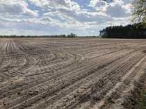 Landwirtschaftsflächen bei Tarmstedt ca 16