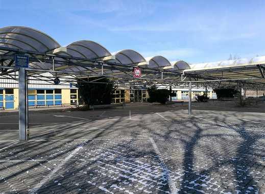 Ausstellungsfläche/ Großhandel im FUCHS - Gewerbepark - Chemnitz