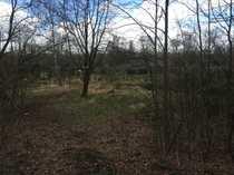 Gartengrundstück in Billwerder