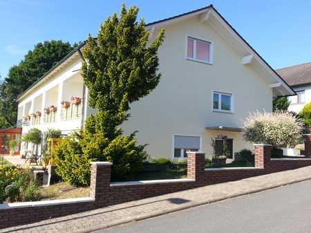 Helle 1-Zi-Wohnung im Grünen, saniert,  großer Süd-Westbalkon in Erlenbach am Main