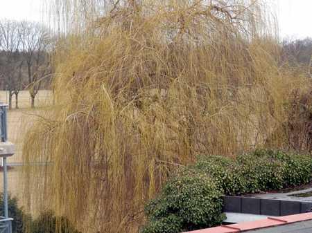 Sonnige 2,5-Zimmer-Balkonwohnung mit traumhaftem Blick ins Grüne in Schwand / Eigenes Heim (Fürth)