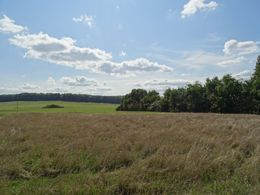 Grundstück - Baufeld