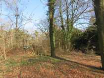 Exklusives Baugrundstück am Uhlenhorster Wald