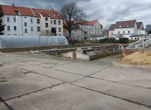 Bauträger auf gepasst! Bauland in historischer Lage von Neustadt i. Sachsen