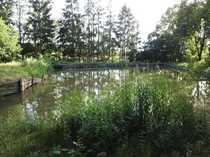 Freizeitgelände mit kleinem See für