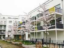 Tolle 4-Zimmer- Penthousewohnung mit großer