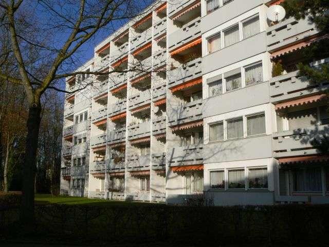 Geräumiges 1-Zimmer-Apartment im Grünen in