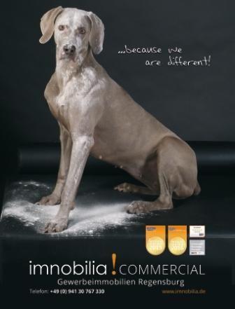Stella_imnobilia_commercial_kl