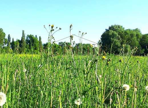 Grosszügige landwirtschaftliche Fläche, Grünland, Ackerland in Ermeuth!