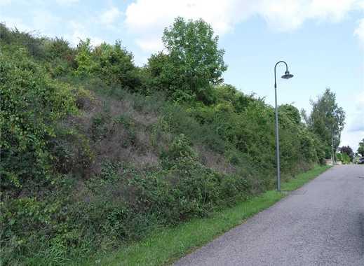 Wincheringen-Söst  -  Sonniges Grundstück, unverbaubare Aussicht