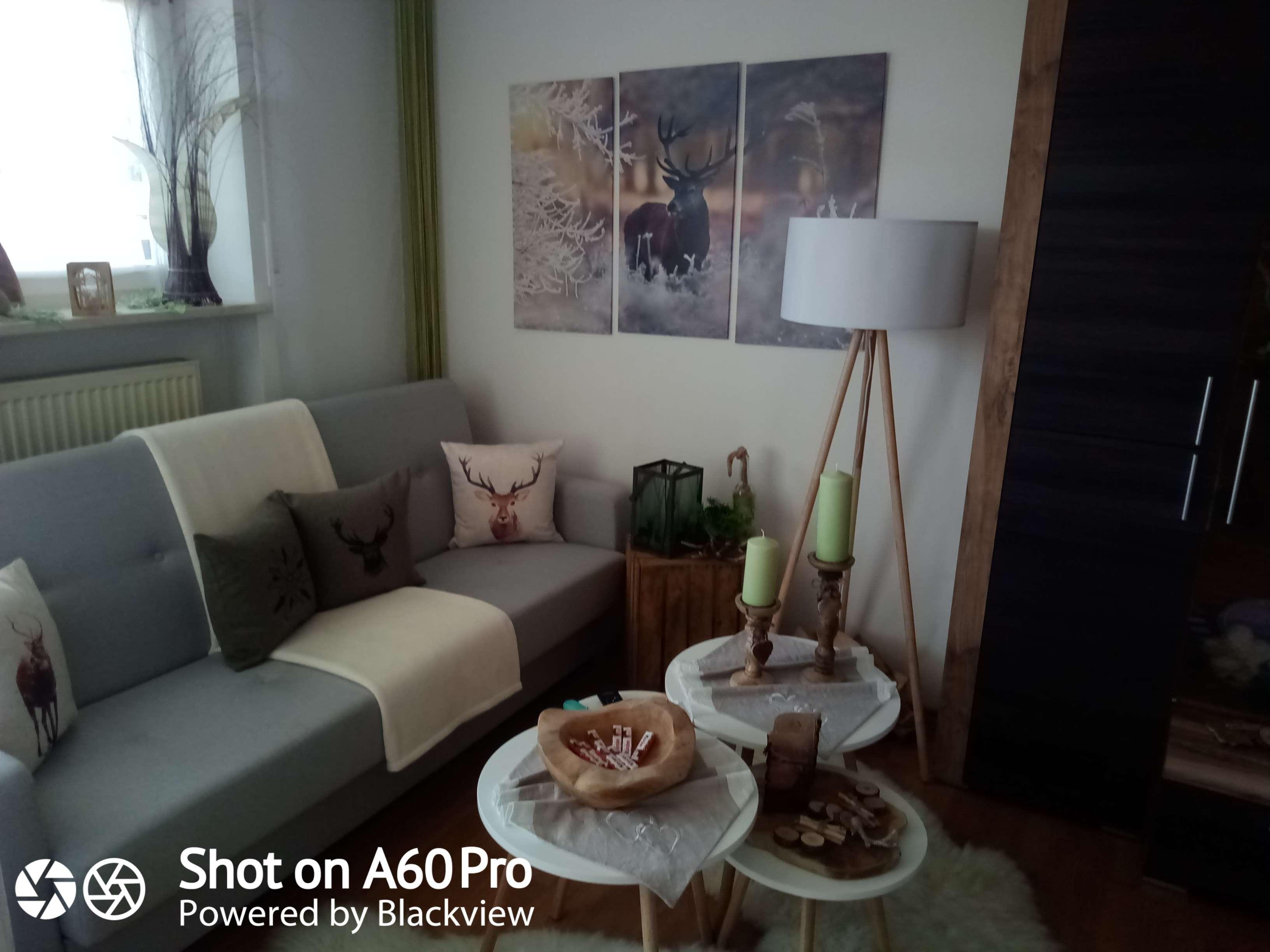 Sehr gepflegte 2-Raum-Wohnung mit Balkon mit Einbauküche und PKW - Stellplatz in Bad Kötzting in