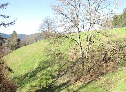 Fantastische Aussicht! Sonniger Bauplatz über den Dächern von Alpirsbach zu verkaufen