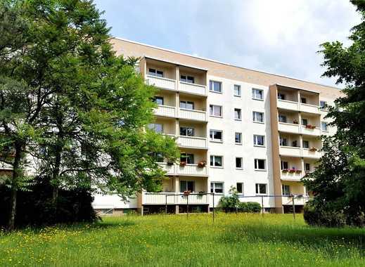 Top Angebot: Nachmieter gesucht für schöne 2-Raumwohnung in Pirna-Copitz!