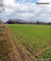 Landwirtschaftliches Grundstück mit 1 119m²