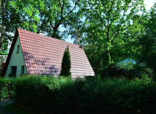 Ferienhaus-Richtig entspannen in ruhiger und traumhafter Lage am Silbersee in Lohsa